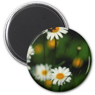 Insects Flowers Round Magnet 1 2 Inch Round Magnet