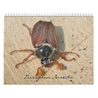Insects of Europe 2016 Calendar