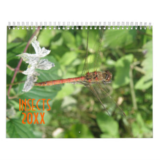 Insects Personalized Calendar