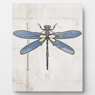 Insects Series- Dragonfly by VOL25 Plaques