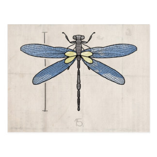Insects Series- Dragonfly by VOL25 Post Card