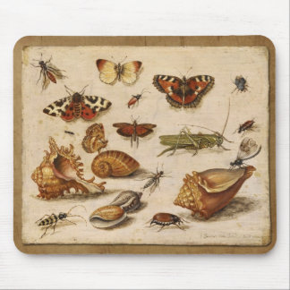 Insects, shells and butterflies mouse pad