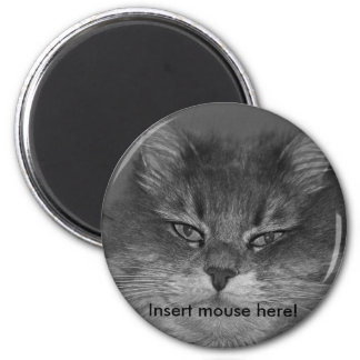 Insert mouse here! refrigerator magnet
