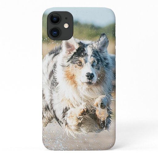 Insert Your Own Photo of Your Australian Shepherd iPhone 11 Case