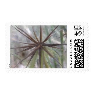Inside A Dandelion Postage Stamps
