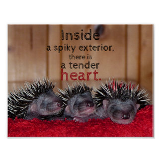 Inside a spiky exterior there is a tender heart poster