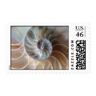 Inside Nautilus Stamp