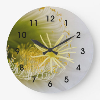 Inside of an Echinopsis in bloom Large Clock