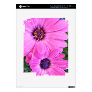 Inside of Pink Purple Gerbera Daisy Flower Nature Decal For iPad 3