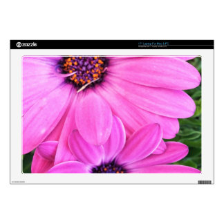 Inside of Pink Purple Gerbera Daisy Flower Nature Decal For Laptop