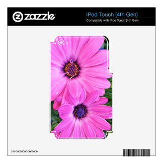 Inside of Pink Purple Gerbera Daisy Flower Nature Skins For iPod Touch 4G