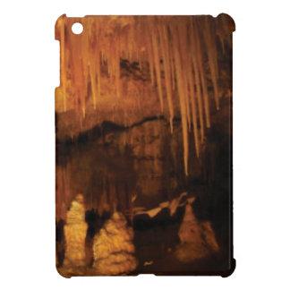 inside the cave of wonder iPad mini case