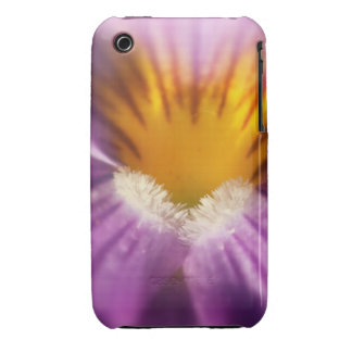Inside Violet iPhone 3 Covers