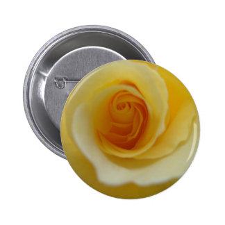 Insignia color de rosa del botón de 2 limones pin