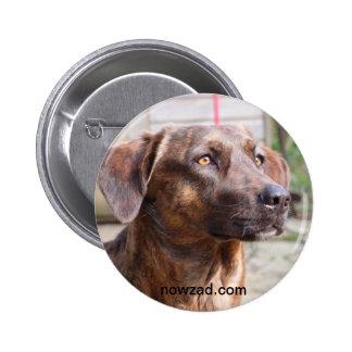 Insignia de Brin del perro del rescate de Nowzad Pin Redondo De 2 Pulgadas