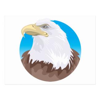 Insignia de Eagle calvo Postal