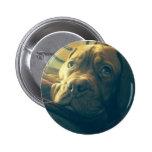 Insignia del botón de Dogue de Bordeaux Gazing Pins