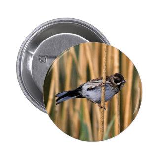 Insignia del botón del empavesado de lámina pin