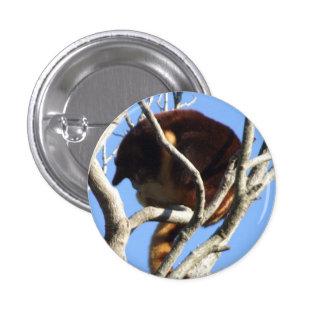 Insignia del canguro de árbol pin redondo de 1 pulgada