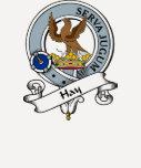 Insignia del clan del heno camisetas