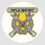 Insignia del experto del rifle etiquetas