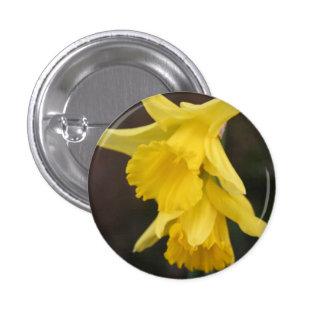 Insignia del narciso pin redondo 2,5 cm