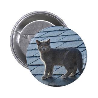 Insignia gris plateada del botón del gatito pin redondo de 2 pulgadas