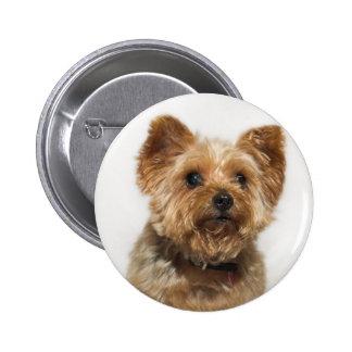 Insignia linda del botón del perro pin redondo de 2 pulgadas