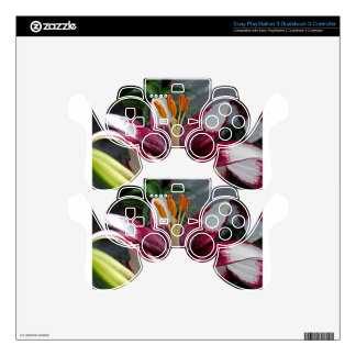 Insignia of Summer PS3 Controller Skins