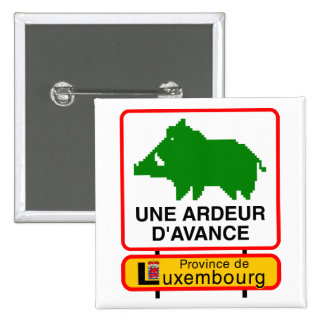 Insignia - Provincia de Luxemburgo un CALOR POR AD Pin Cuadrado