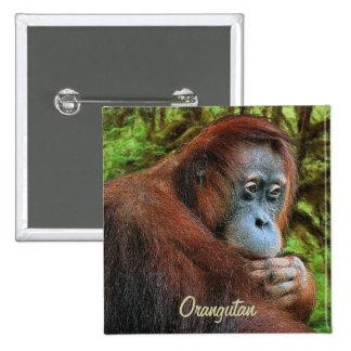 Insignia salvaje del arte del orangután y del pin cuadrado
