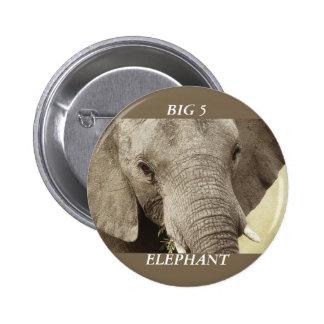 Insignias y botones del safari de la fauna del ele