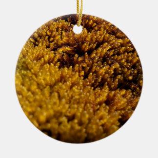 Inspección del musgo adorno navideño redondo de cerámica