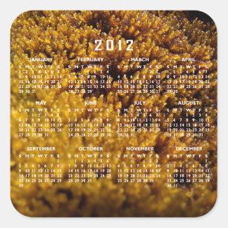 Inspección del musgo; Calendario 2012 Calcomanias Cuadradas