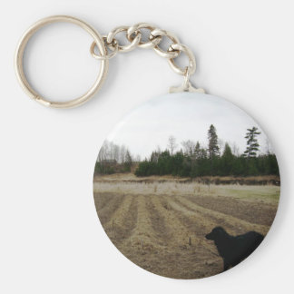 Inspecting newly planted shallots basic round button keychain
