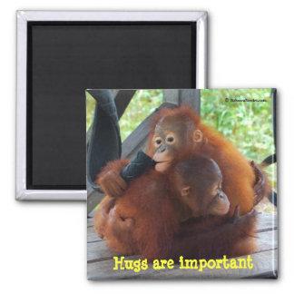 Inspiración de bebés: Los abrazos son importantes Imán Cuadrado