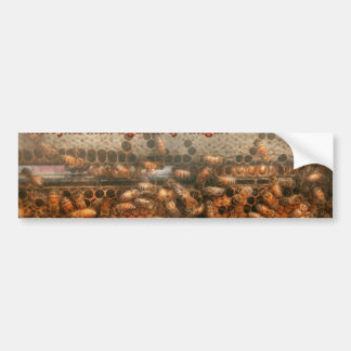 Inspiration - Apiary - Bee's - Sweet success Bumper Sticker