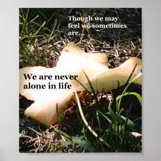 Inspiration Through Nature Poster