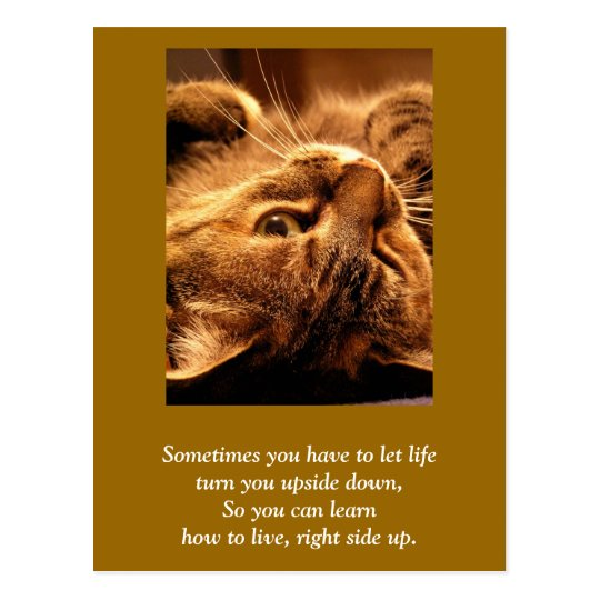 Inspirational card: Life up side down Postcard
