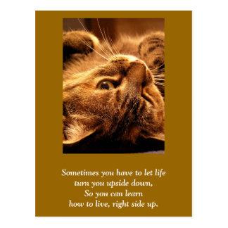 Inspirational card Life up side down Wens Kaarten