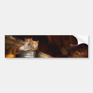 Inspirational - Cat - Bucket of fun Bumper Sticker