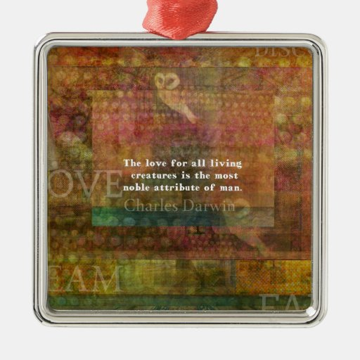 Inspirational Charles Darwin Animal Rights Quote Metal Ornament