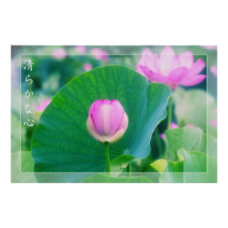 Inspirational Cool Pink Lotus Bud Pond Green Leaf Poster