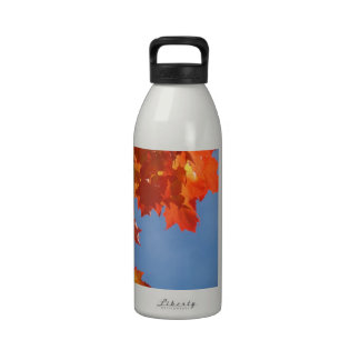 Inspirational Hydration Water Bottles Autumn