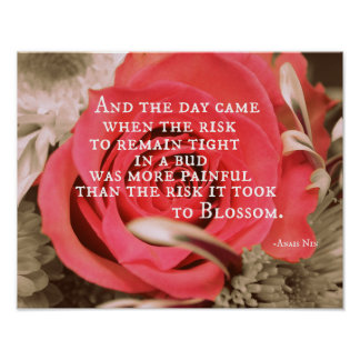 Inspirational Life Quote about Risk Poster