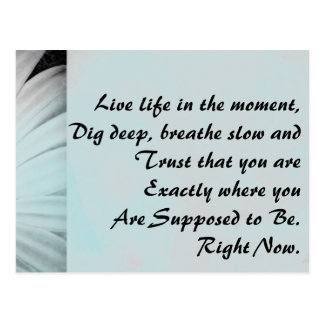 Inspirational Live Life in the Moment Postcard