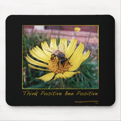 INSPIRATIONAL MOUSE PAD 10T
