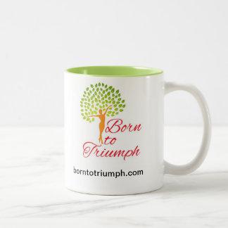 Inspirational Mug -- Born to Triumph