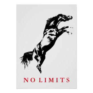 Inspirational No Limits Black White Horse Artwork Poster