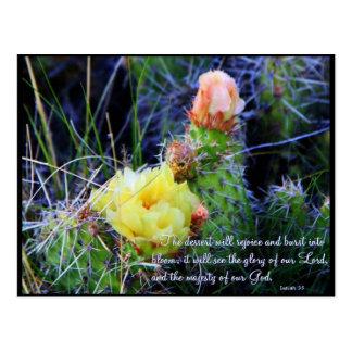 Inspirational PostCard - Cacti in Bloom
